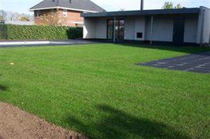 tuin met gras en zwembad